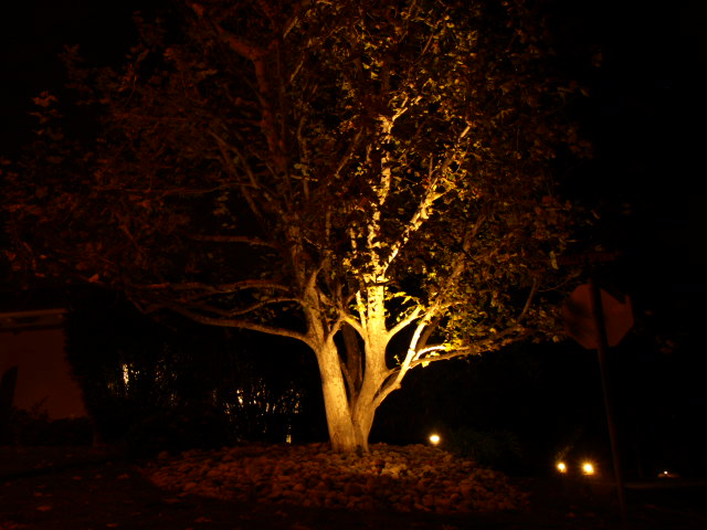 Lake Sherwood Outdoor Lighting Outdoor Lighting